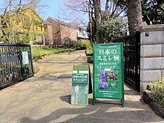 桜丘すみれば自然公園へもすぐです。