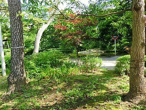 マンション(建物一部)-千代田区麹町4丁目 周辺環境:清水谷公園