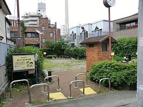 マンション(建物一部)-渋谷区恵比寿西1丁目 周辺環境:氷川つるかめ公園