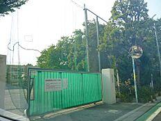 浜田山小学校