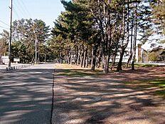 浜の宮公園…約810m