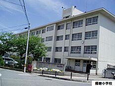 播磨小学校 約340m