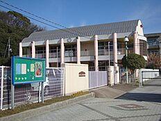 手柄幼稚園 約800m