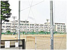 中学校昭島市立昭和中学校まで564m