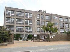 平岡南中学校 約860m