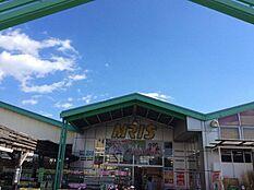 モリスホームセンター高砂米田店 約250m