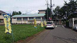 道路の反対側は、第七小学校