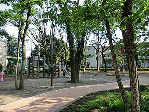 マンション(建物全部)-練馬区関町南4丁目 周辺環境:扶桑通り公園