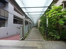 最初の扉を入ると植栽がキレイな通路があります。