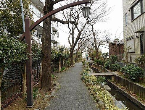 マンション(建物全部)-足立区東綾瀬2丁目 周辺写真