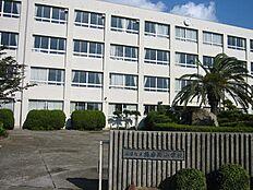 播磨西小学校 約210m