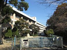 朝霧中学校(1300m)