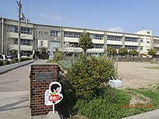 小学校野崎西小学校まで873m