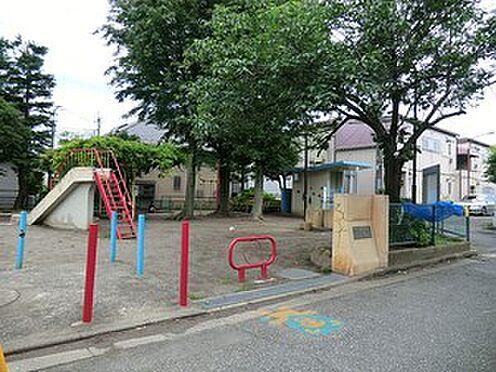 マンション(建物全部)-杉並区阿佐谷北3丁目 周辺環境:すぎのこ公園