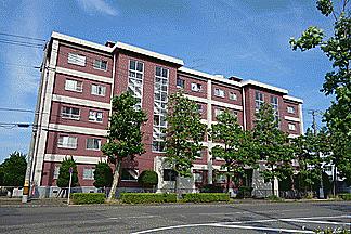 マンション(建物一部)-新潟市中央区川岸町2丁目 外観