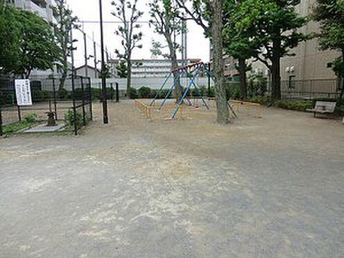 マンション(建物全部)-豊島区上池袋4丁目 千川上水公園