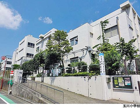 マンション(建物全部)-世田谷区上野毛2丁目 玉川小学校