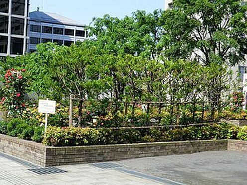 マンション(建物一部)-港区赤坂6丁目 周辺環境:氷川公園