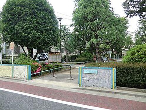 マンション(建物全部)-世田谷区経堂2丁目 周辺環境:山下西公園