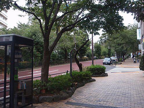 店舗事務所(建物全部)-文京区白山5丁目 その他播磨坂まで1102m