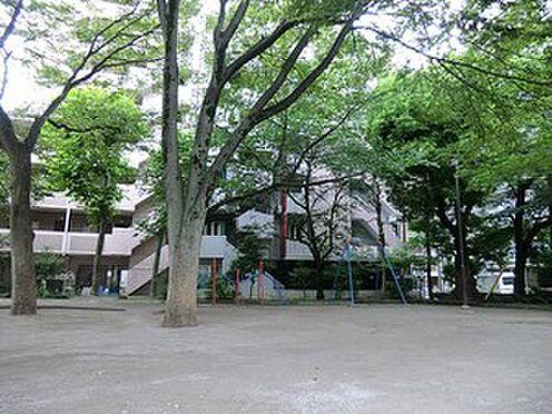 マンション(建物全部)-豊島区上池袋4丁目 周辺環境:北谷端公園