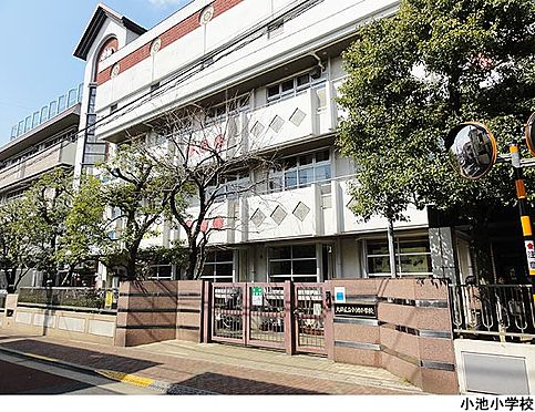 マンション(建物全部)-大田区東雪谷4丁目 小池小学校