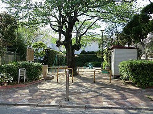 マンション(建物全部)-目黒区東が丘1丁目 周辺環境:曽根児童遊園