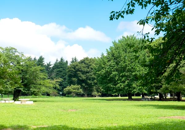 光が丘公園 約650m(徒歩9分)
