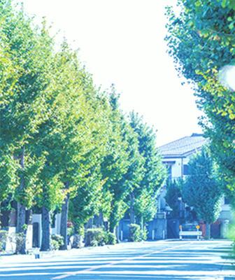 柿生緑地 約980m(徒歩13分)