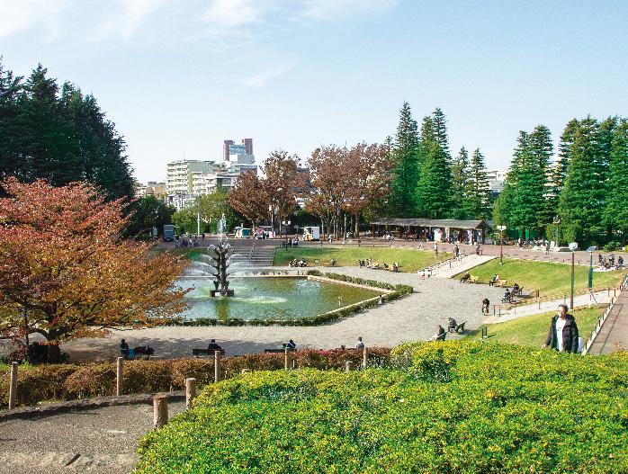 世田谷公園 約500m(徒歩7分)
