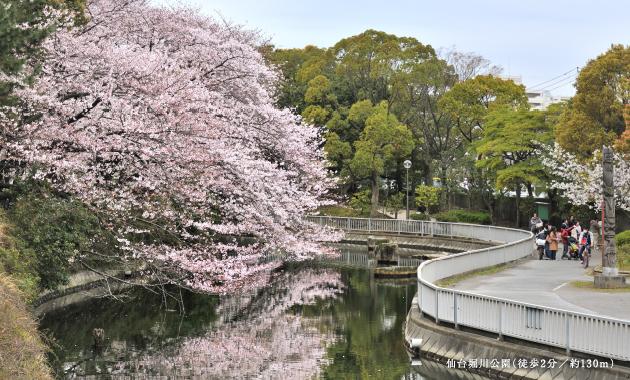 仙台堀川公園 約130m(徒歩2分)