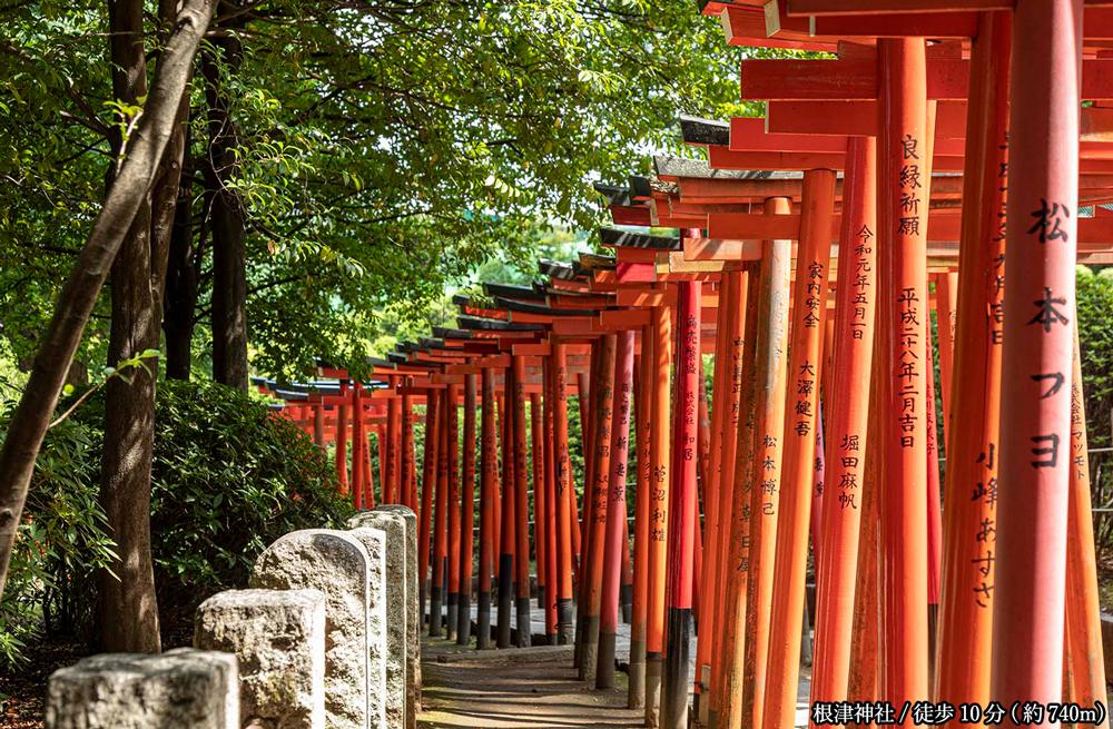 根津神社 約740m(徒歩10分)