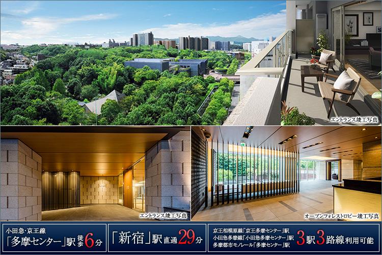 南に遮るものなく多摩中央公園を見晴らす唯一の邸宅