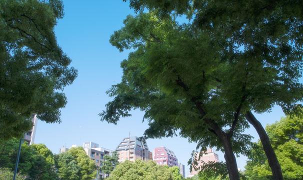 南大江公園 約120m(徒歩2分)
