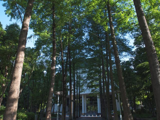 上福島北公園 約110m(徒歩2分)
