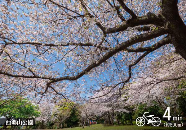 西郷山公園 約800m(自転車4分)