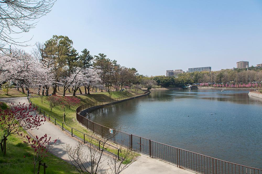 桃山公園 約410m(徒歩6分)(撮影日:2018年4月)