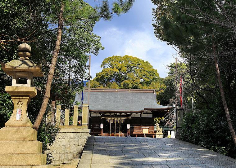 弓弦羽神社 約380m(徒歩5分)