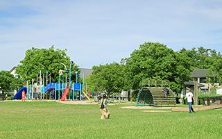 家原大池公園(家原大池体育館) 約600m(徒歩8分)