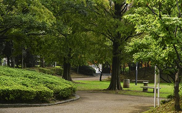 大谷田公園 約220m(徒歩3分)