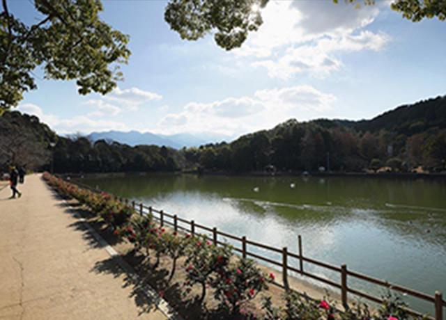 滝の宮公園 約1,150m(徒歩14分)