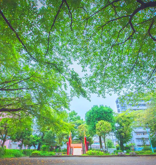 錦第二公園 約300m(徒歩4分)