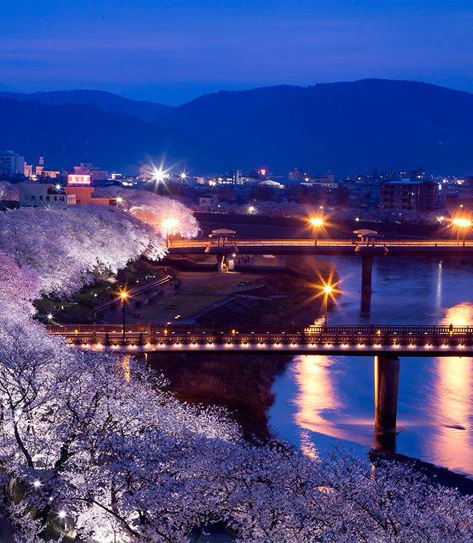 足羽川桜並木 約400m(徒歩5分)