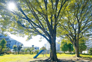 新生公園 約530m(徒歩7分)