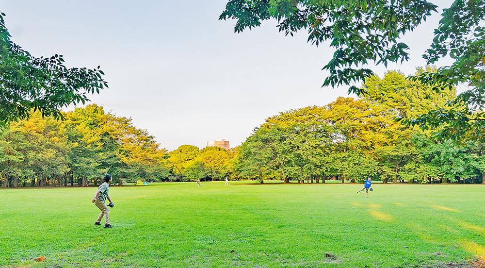 県立柏の葉公園 約1,630m(徒歩21分)
