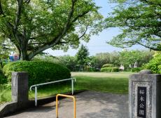 桜木公園 約10m(徒歩1分)