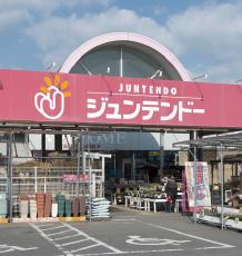 ジュンテンドー古市店 約300m(徒歩4分)