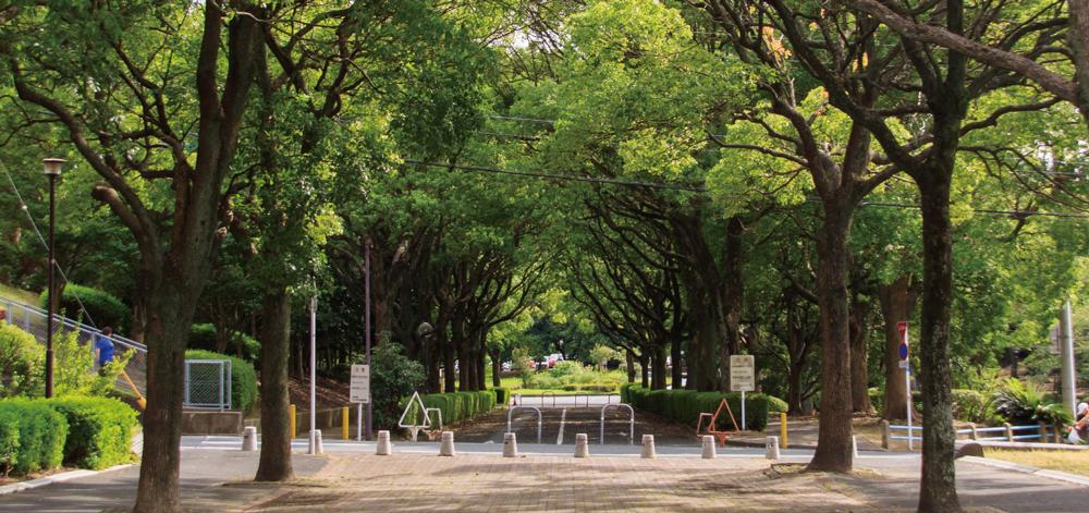 桃園公園 約40m(徒歩1分)