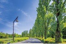 水元公園(車約30分・約7500m)
