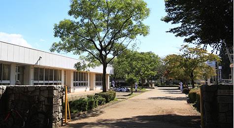 つくばAZUMA学園 約990m(徒歩13分)